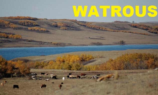 Watrous